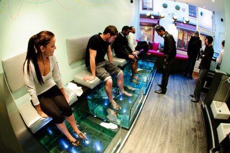 January 2012 brilliant brighton for Fish pedicure price