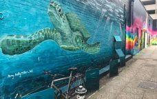Would you like a mural on your business?